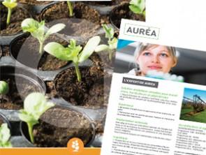 nouvelle brochure horticultureaurea